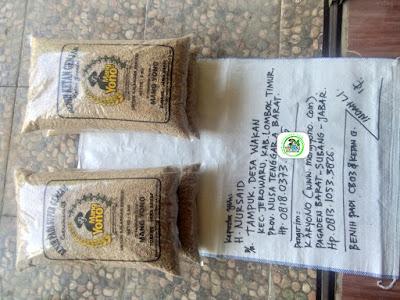 Benih Padi yang dibeli    H. NURSAID Lombok Timur, NTB.    (Sebelum packing karung).