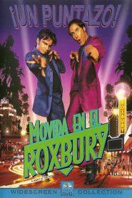 Una noche en el Roxbury (1998) Online latino hd