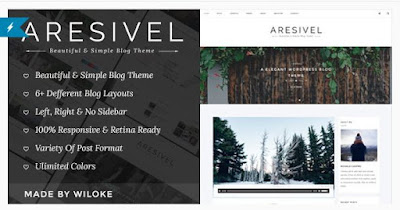 Aresivel Download themeforest