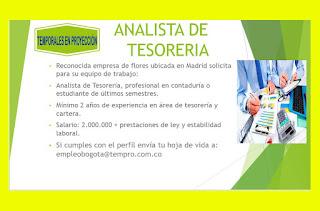Empleo como Analista de Tesoreria en Bogota