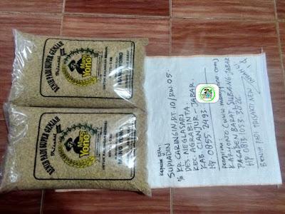 Benih padi yang dibeli SUPIADIN Cianjur, Jabar. (Sebelum packing karung ).