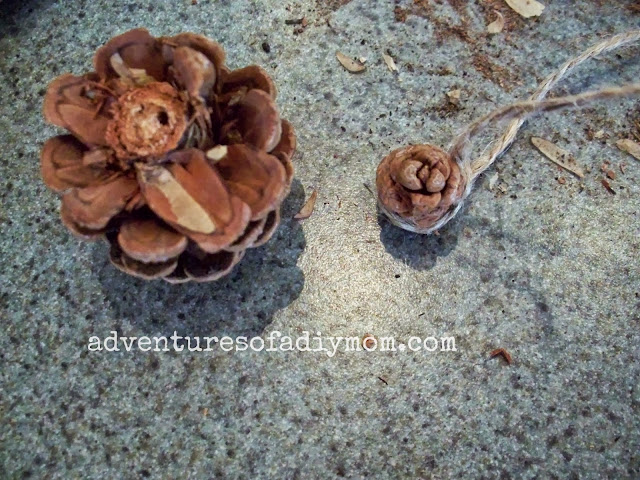how to cut the pine cone to make a flower