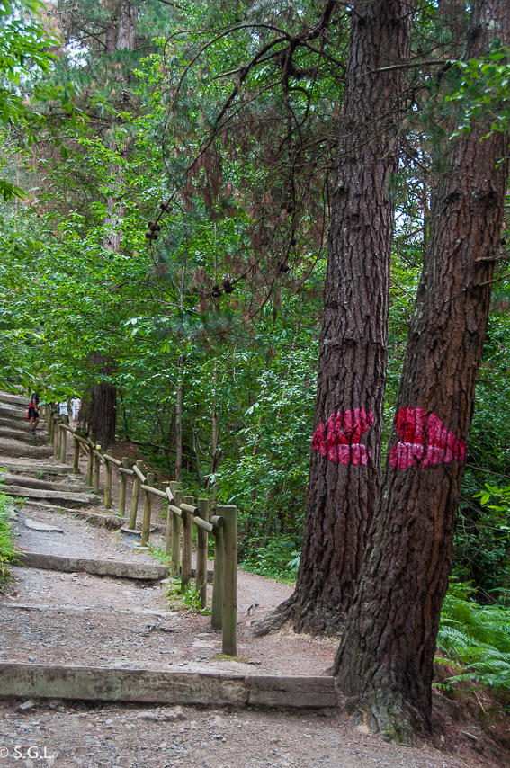 El beso en el bosque de Oma de Ibarrola