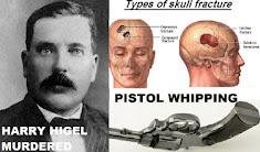 Herald Tribune revisits 100 year old unsolved murder of Mayor Harry Higel Sites PI Bill Warner