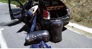 Operação policial termina com a apreensão de 30 quilos de maconha e quatro pessoas presas
