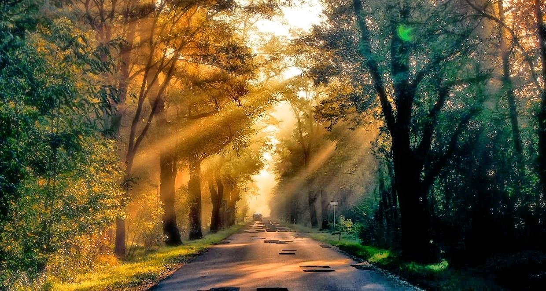 Guten Morgen Kommt Gut Zur Arbeit Und Habt Einen Schönen Tag