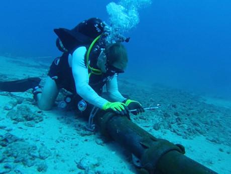 Phải Đến Mùng 1 Tết Cáp Quang Biển Mới Sửa Xong