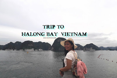 Trip To Halong Bay, Vietnam