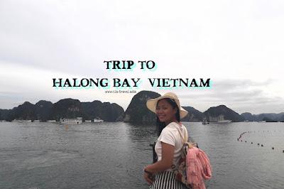 Trip To Halong Bay, Vietnam