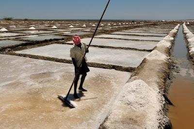 pembuatan garam peran fisika dalam bidang industri