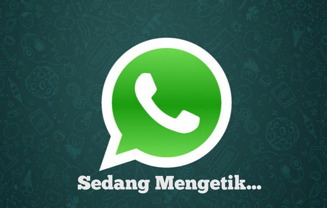 Cara Menghilangkan Status Sedang Mengetik di Whatsapp Bukan Mod