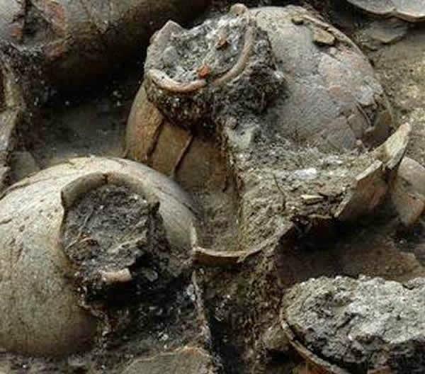 La excavación de un palacio cananeo en Israel reveló la existencia de la bodega de vino más antigua conocida, según un estudio publicado por Andrew Koh, de la Universidad de Brandeis.