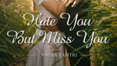 Novel hate you but Miss you