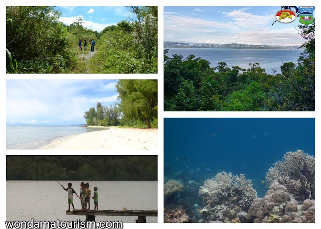 beach, coral reef and rainforest in Wondama bay