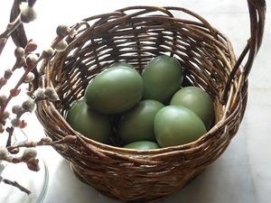 яйца пасхальные, стол пасхальный, декор пасхальный, яйца, украшение яиц, декор яиц, Пасха, советы, мастер-класс, рекомендации, идеи пасхальные, http://eda.parafraz.space/,Мастер-классы и идеи по окраске яиц, Декупаж вареных яиц на крахмале, Значения символов, используемых при росписи пасхальных яиц, Кружевные пасхальные яйца, Мозаичные пасхальные яйца, Окрашивание яиц луковой шелухой, Окрашивание яиц натуральными красками, Окрашивание яиц с помощью пены для бритья, Разноцветные яйца со спиральными разводами, Секреты подготовки и окрашивания пасхальных яиц, Яйца «в крапинку», Яйца с растительным рисунком, как покрасить пасхальные яйца в домашних условиях, чем покрасить яйца на Пасху, пасхальные яйца фото, пасхальные яйца картинки, пасхпльные яйца крашенки, пасхальные яйца писанки, красивые пасхальные яйца своими руками, методи окрашивания пасхальных яиц, как покрасить яйца, когда красят яйца, чем красят яйца, пасхальные традиии, Секреты подготовки и окрашивания пасхальных яиц, Символика рисунков на пасхальных яйцах, Окрашивание яиц натуральными красками