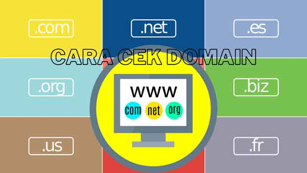 cara cek dan strategi memilih nama domain