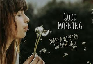 Good morning photo 2021
