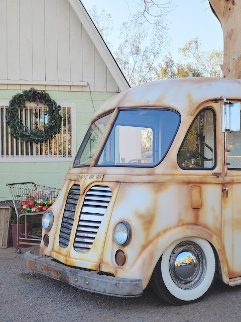 Meander Gatherings 2020 Holiday Shoot