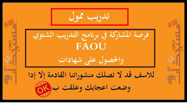 فرصة المشاركة في برنامج التدريب الشتوي FAOU والحصول على شهادات