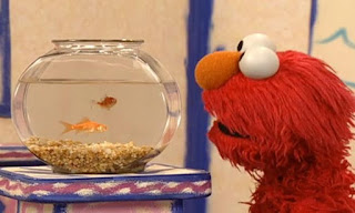 Dorothy has a question how do you take turns with a friend. Dorothy has got a friend in her bowl. Elmo watches Dorothy. Sesame Street Elmo's World Friends