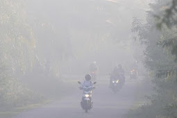 Daerah Di Indonesia yang Paling Sering diselimuti Kabut Asap Karena Kebakaran Lahan dan Hutan