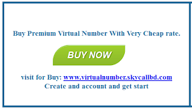 Ebay Verify For Virtual Number