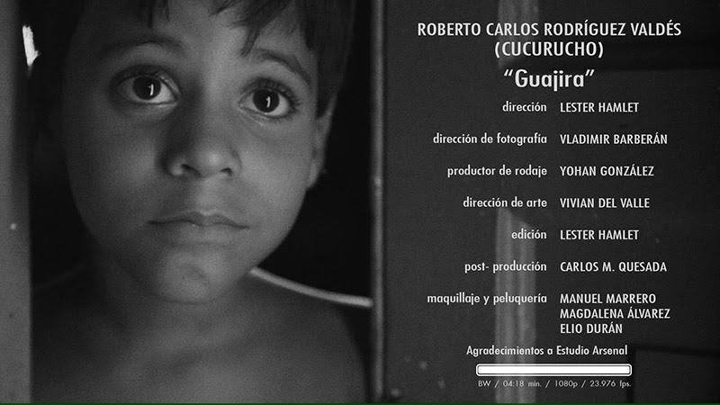 Roberto Carlos Rodríguez Valdéz (Cucurucho) - ¨Guajira¨ - Videoclip - Dirección: Lester Hamlet. Portal Del Vídeo Clip Cubano - 10