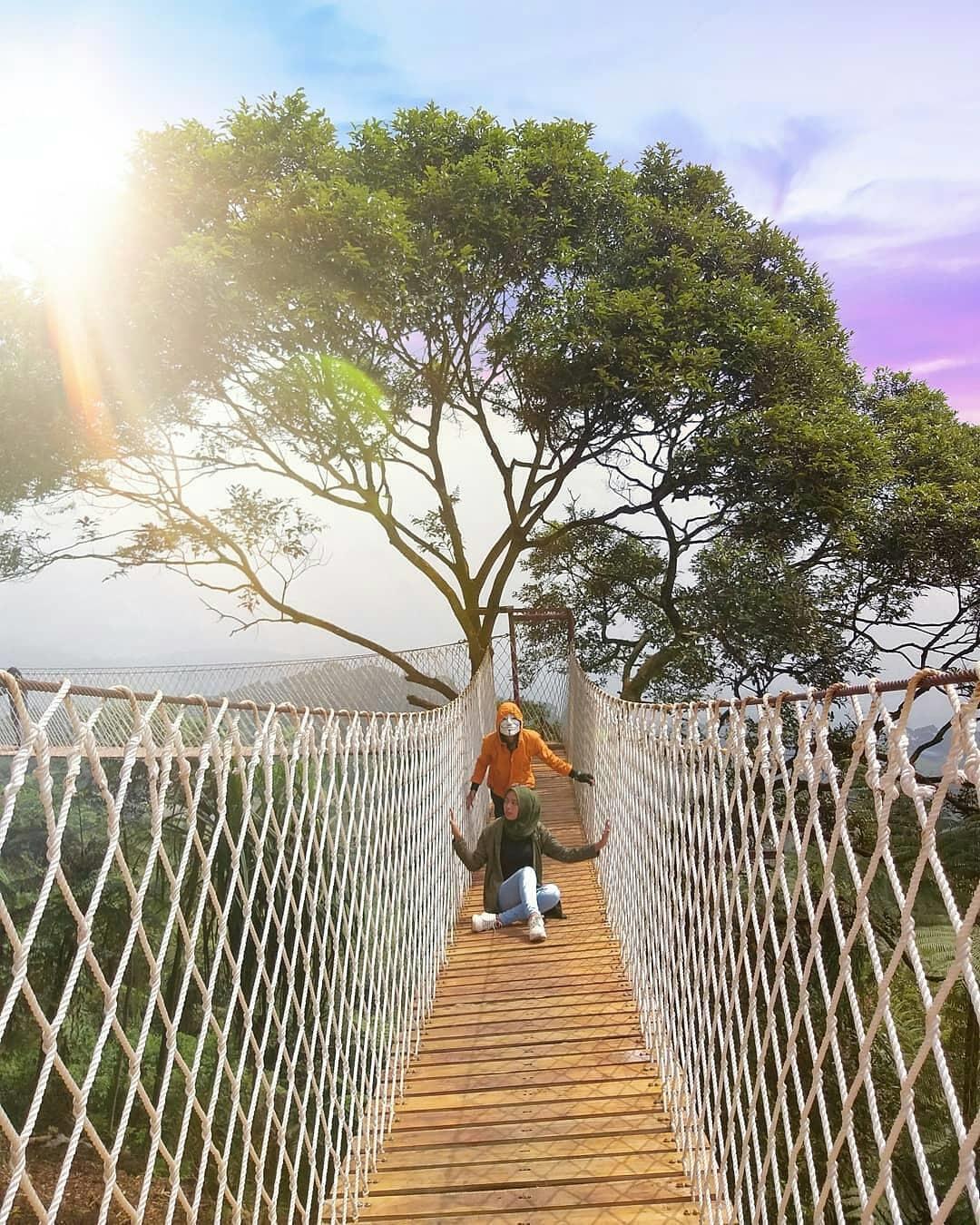 Harga Tiket Masuk Dan Lokasi Bukit Halimun Salak Bogor