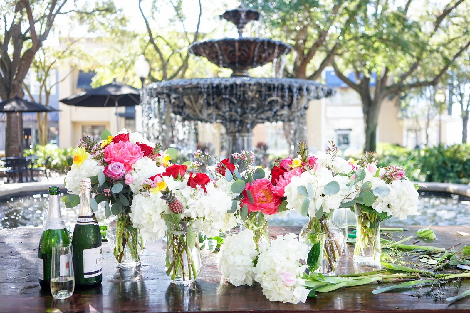 Blooms and Bubbles