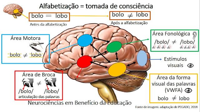 Ler e escrever requerem dedicação, exercício e tomada de consciência