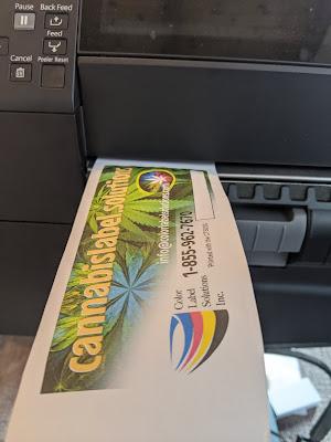 C6000 Printed DT Receipt Paper