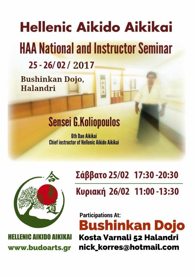 Hellenic Aikido Aikikai National Seminar