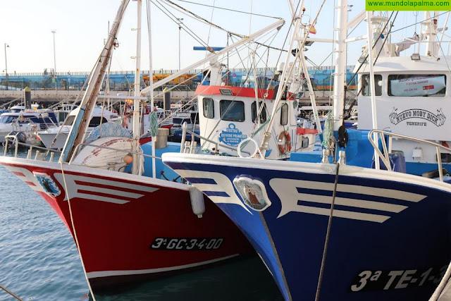 El Gobierno canario convoca las ayudas para los operadores de productos de pesca y acuicultura