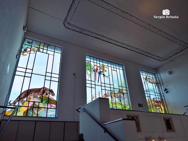 Close-up dos vitrais do Museu de Zoologia da USP - Ipiranga - São Paulo