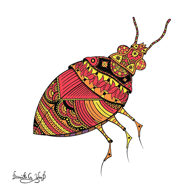 colorful beetle bug insect artwork art