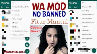 WhatsApp MOD Anti Blokir Dengan Fitur Mantul