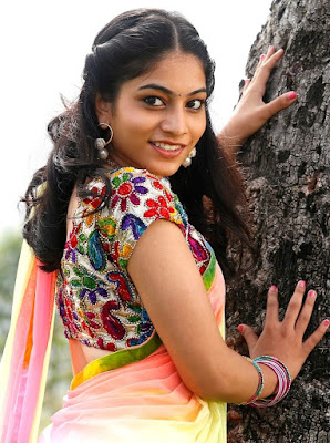 TELUGU ACTRESS BLOUSE STILL