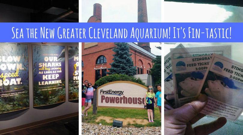 We're Eel-ing Over Changes to Greater Cleveland Aquarium! It's Fin-tastic