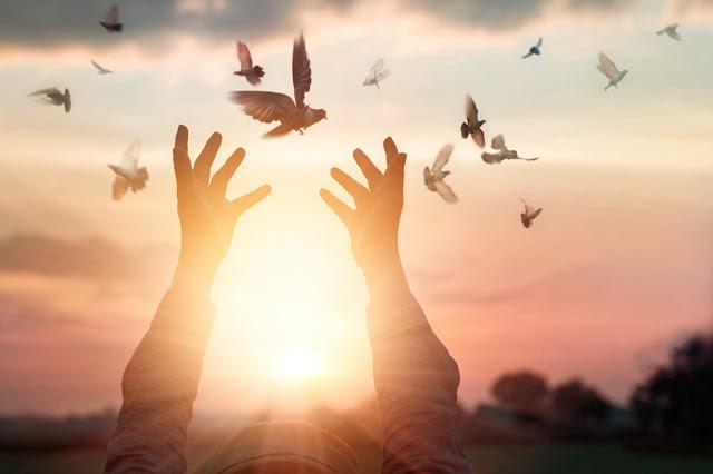 kako i zašto iskreno oprostiti