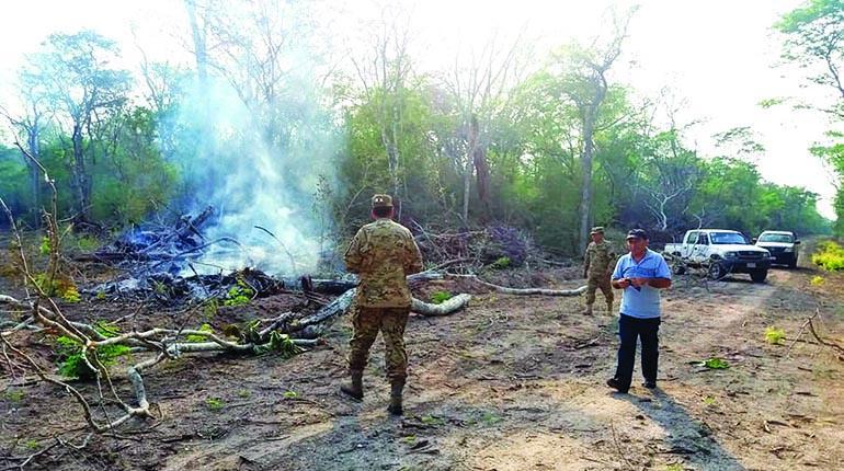 Unas 50 hectáreas fueron deforestadas en la reserva Paquió en octubre de 2018 / GAMR