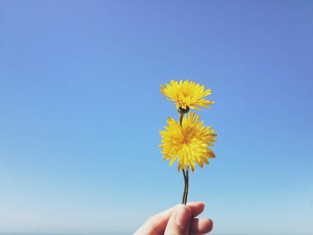 Setembro amarelo, doenças e saúde mental
