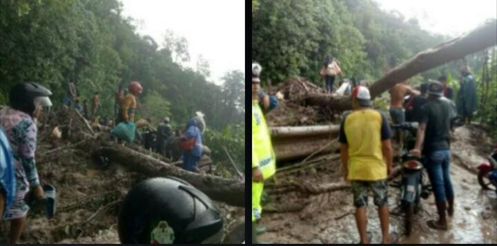 Warga dan polisi gotongroyong menyingkirkan pohon tumbang dan tanah longsor yang terjadi di Madina.