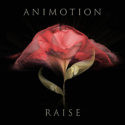 Animotion - Raise Your Expectations
