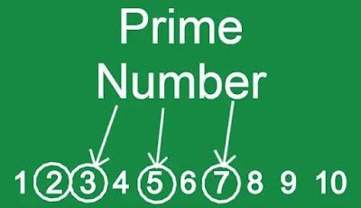 prime number definition
