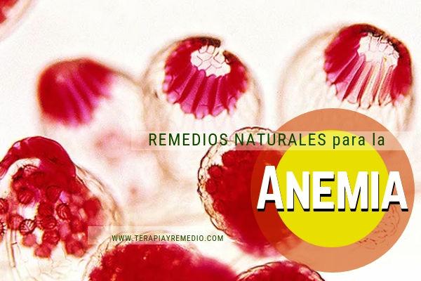 Remedios naturales para combatir la anemia.