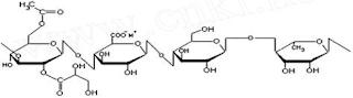 high acyl gellan gum structure