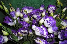 luxury artificial purple hydrangea