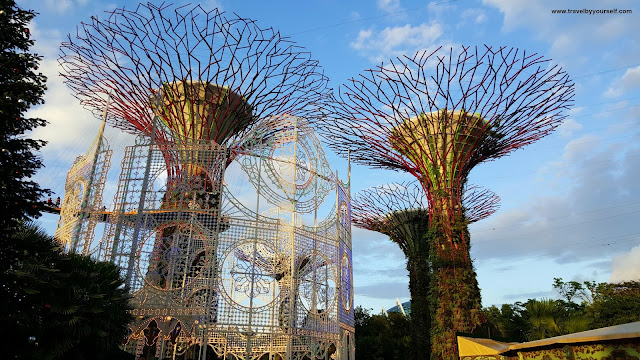 Super Tree Grove Gardens by the Bay