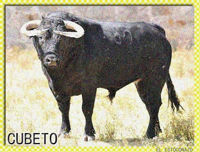Diferentes razas de toros - Página 3 14390787_1042640119186756_184650524735184201_n