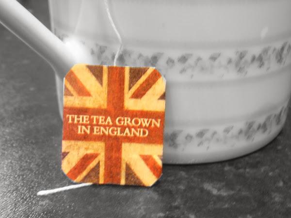The Tea Grown in England.